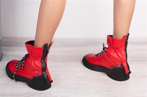 Ботинки 5100-9мех - фото 9225