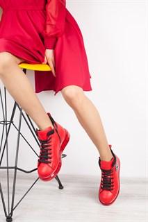 Ботинки 5151-R389 BORDO - фото 9889